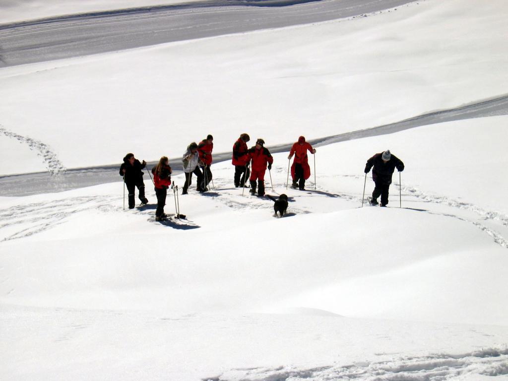 Mitarbeiter beim Ausflug im Winter